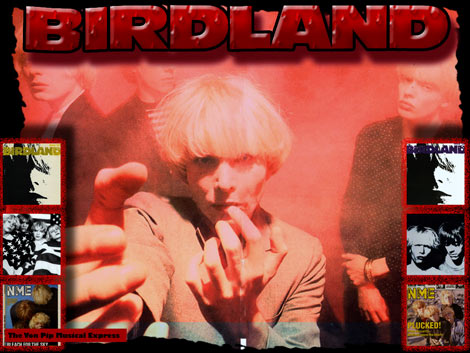 Birdland Return ! 2011 Interview