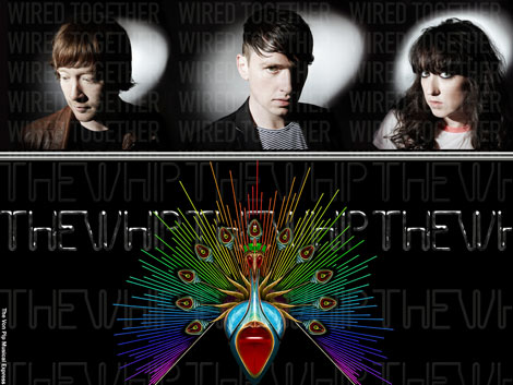 The Whip - Wired Together - Interview VPME - 2011